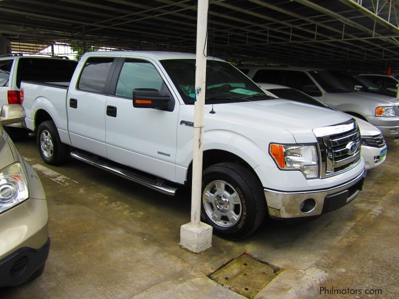 ford f150 ecoboost delete autos post 2008 ford f150 fx4 supercrew 4x4. Cars Review. Best American Auto & Cars Review