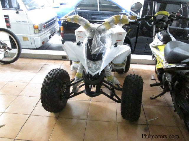 new atv atv 2017 atv for sale quezon city atv atv sales atv atv price 80 000 bikes atv. Black Bedroom Furniture Sets. Home Design Ideas